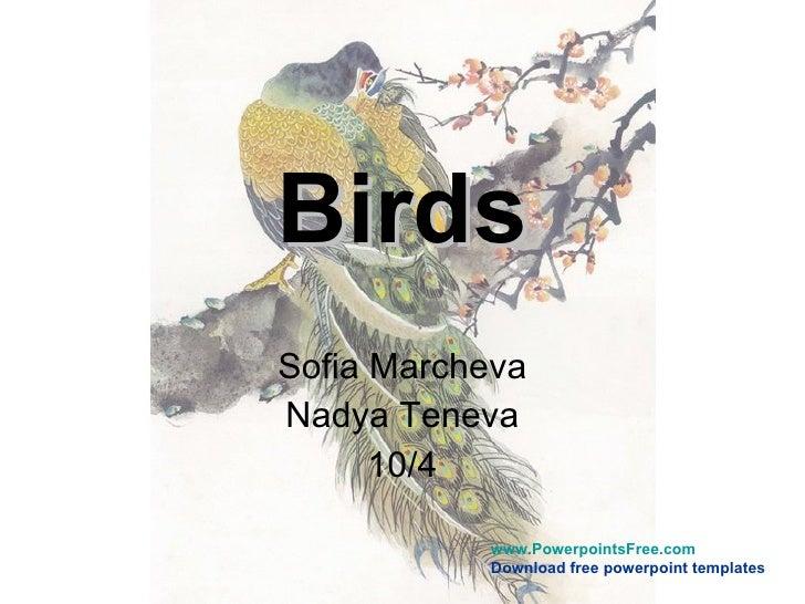 Birds Sofia Marcheva Nadya Teneva 10/4