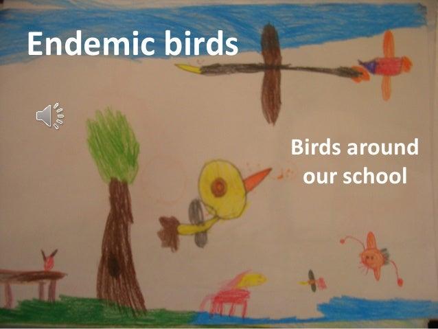 Endemic birds                Birds around                 our school