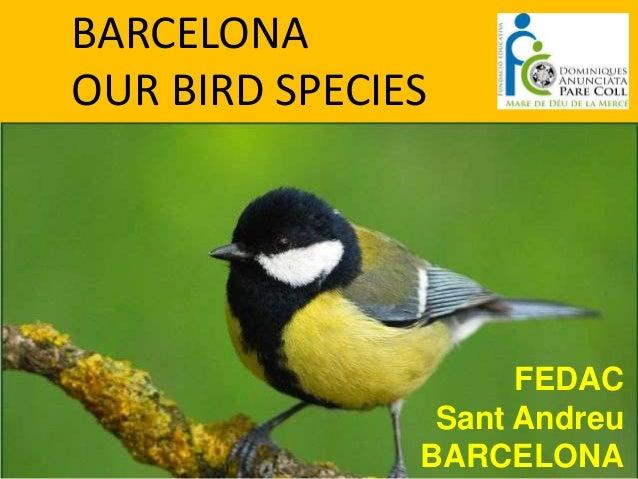 BARCELONAOUR BIRD SPECIES                     FEDAC                Sant Andreu               BARCELONA