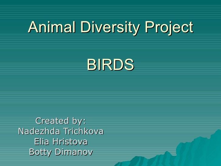 Animal Diversity Project BIRDS Created by: Nadezhda Trichkova Elia Hristova Botty Dimanov