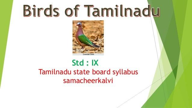Std : IX Tamilnadu state board syllabus samacheerkalvi
