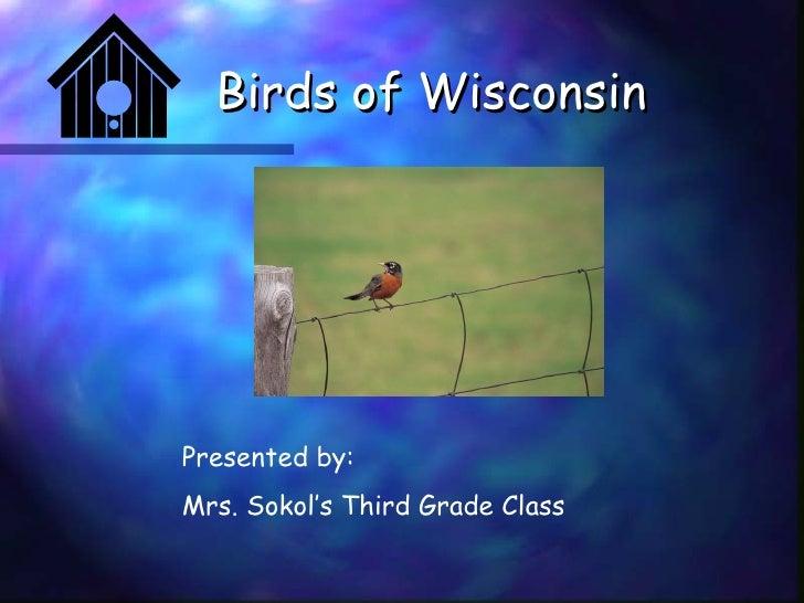 Birds of Wisconsin Presented by: Mrs. Sokol's Third Grade Class