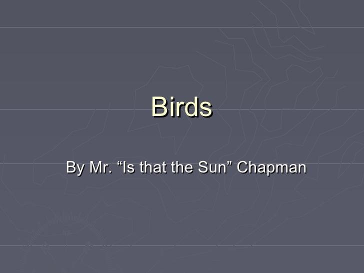 "BirdsBy Mr. ""Is that the Sun"" Chapman"