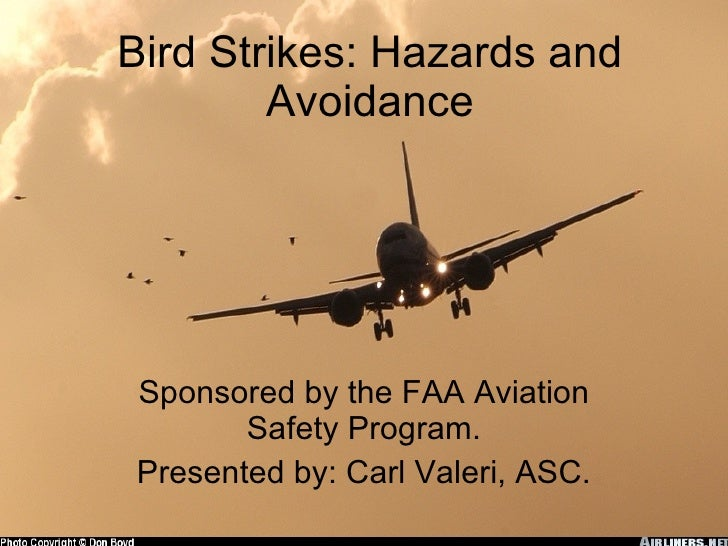 Bird Strikes: Hazards and Avoidance Sponsored by the FAA Aviation Safety Program. Presented by: Carl Valeri, ASC.