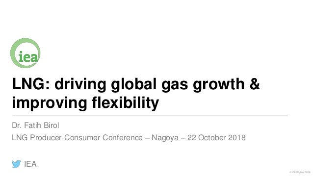 © OECD/IEA 2018 LNG: driving global gas growth & improving flexibility Dr. Fatih Birol LNG Producer-Consumer Conference – ...