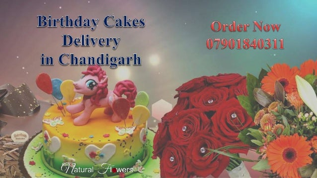 Birthday Cake Delivery In Chandigarh