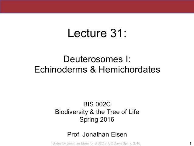 Slides by Jonathan Eisen for BIS2C at UC Davis Spring 2016 Lecture 31: Deuterosomes I: Echinoderms & Hemichordates BIS 002...