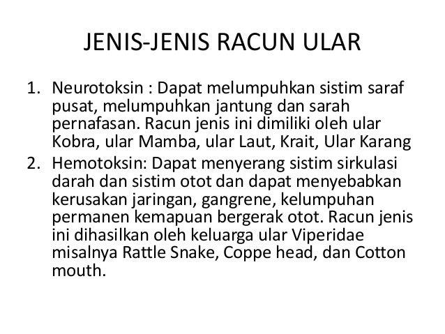 Perbedaan bisa ular