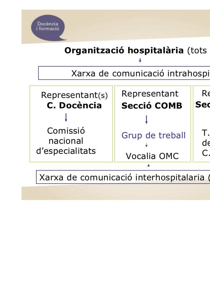 Organització hospitalària (tots residents)        Xarxa de comunicació intrahospitalaria Representant(s)   Representant   ...