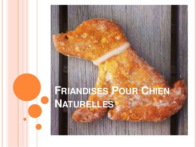 FRIANDISES POUR CHIEN NATURELLES