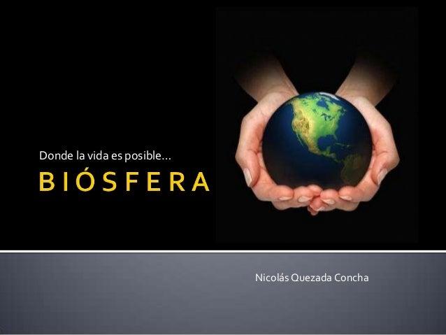 Donde la vida es posible… NicolásQuezada Concha