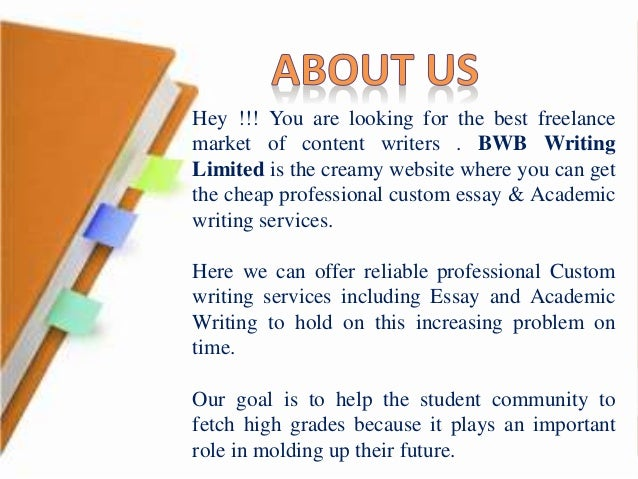 Professional custom essays writing service