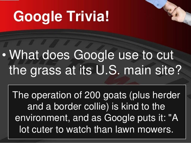 Google Trivia!  •  What does Google use to cut the grass at its U.S. main site?  The operation of 200 goats (plus herder a...