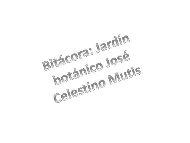 I.E.D. Rodolfo Llinas Nirmal David Gutiérrez R. Cristian Ricardo Leal P. Química/Tecnología/Biología Carolina Muñoz/Cediel...