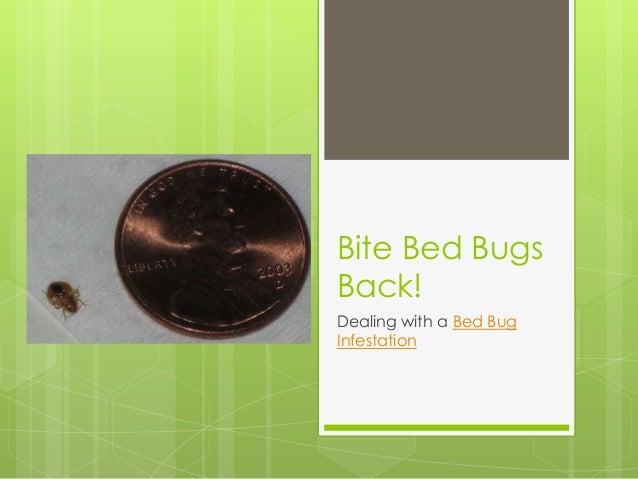 Bite Bed BugsBack!Dealing with a Bed BugInfestation