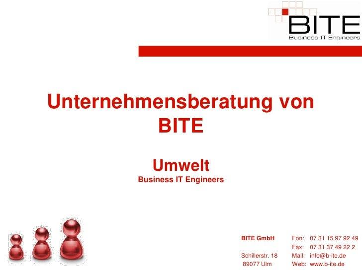 Unternehmensberatung von          BITE            Umwelt         Business IT Engineers                                    ...