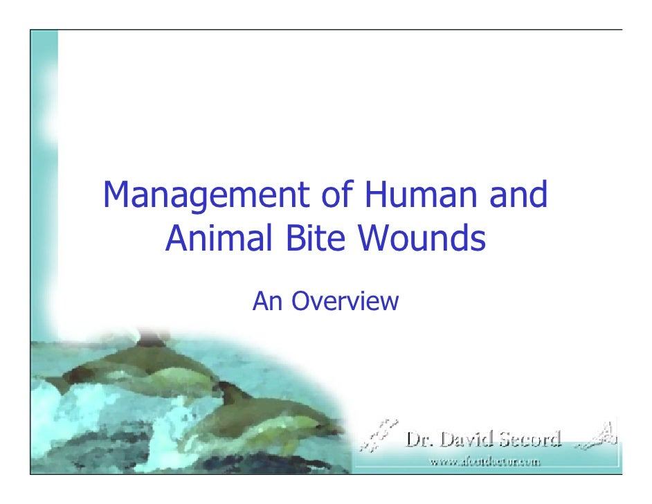 Management of Human and    Animal Bite Wounds        An Overview
