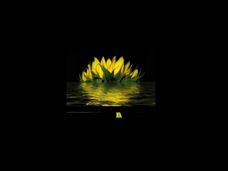 Created by Raissa_ro Music by Mike Oldfield – Dark Island Album: Voyager http://www.slideshare.net/Raissa_ro