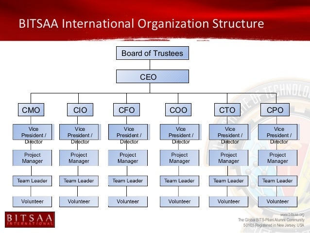 What Is the Organizational Structure of the Coca-Cola Company?