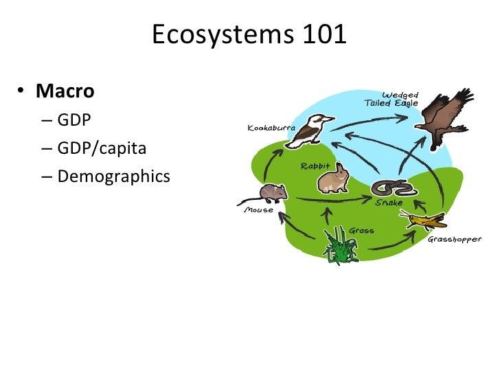 Ecosystems 101 • Macro    – GDP    – GDP/capita    – Demographics • Culture    – Language(s)    – R...