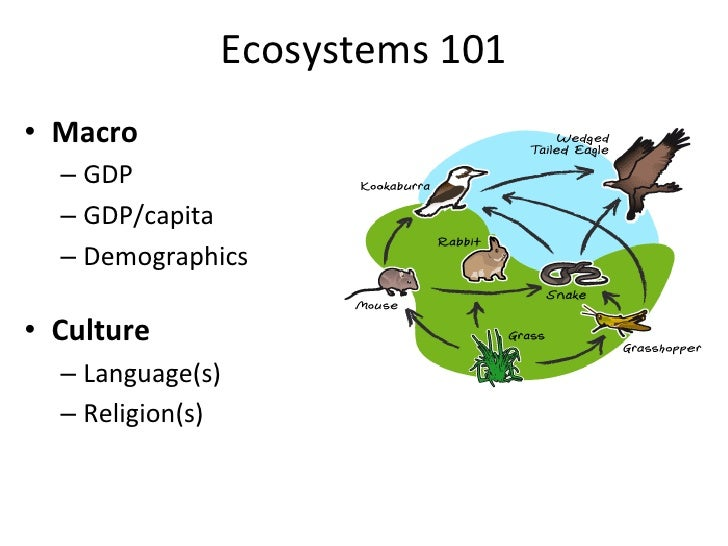 Ecosystems	  101	  •  Macro	      –  GDP	      –  GDP/capita	      –  Demographics	  •  Culture	      –  Language(s)	     ...