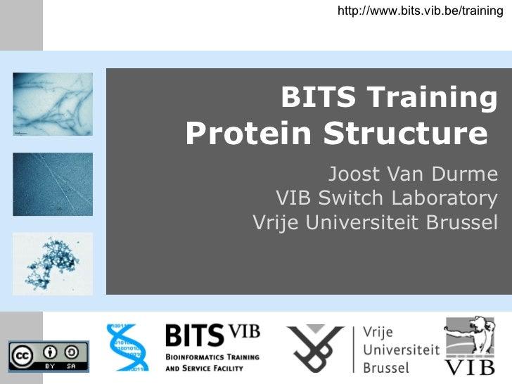 BITS Training Protein Structure   Joost Van Durme VIB Switch Laboratory Vrije Universiteit Brussel http://www.bits.vib.be/...