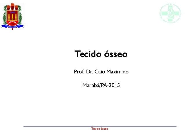 Tecido ósseo Tecido ósseo Prof. Dr. Caio Maximino Marabá/PA-2015