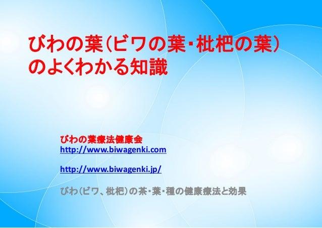 びわの葉(ビワの葉・枇杷の葉) のよくわかる知識  びわの葉療法健康会 http://www.biwagenki.com http://www.biwagenki.jp/ びわ(ビワ、枇杷)の茶・葉・種の健康療法と効果