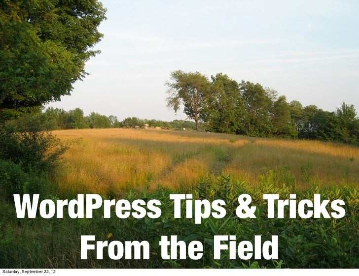 WordPress Tips & Tricks         From the FieldSaturday, September 22, 12
