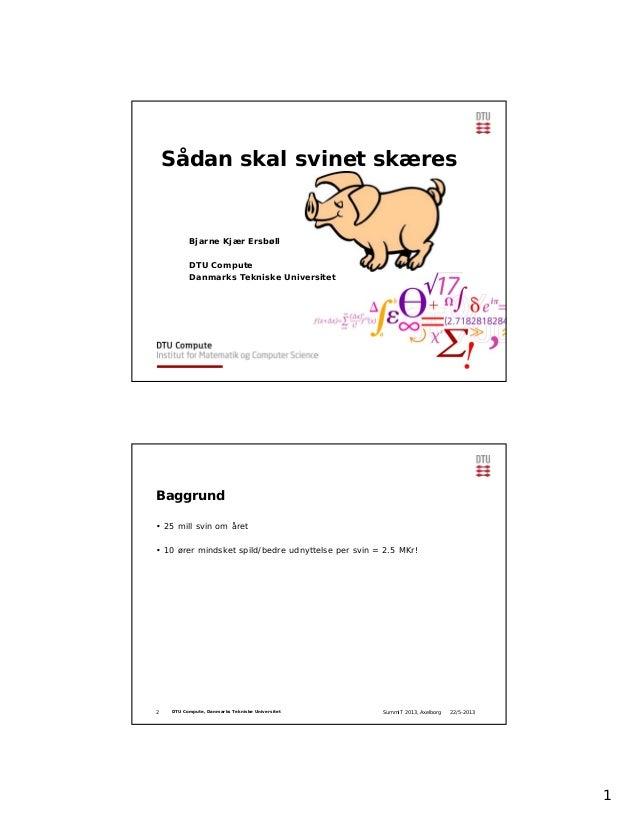 1Sådan skal svinet skæresBjarne Kjær ErsbøllDTU ComputeDanmarks Tekniske Universitet22/5-2013SummIT 2013, Axelborg2 DTU Co...