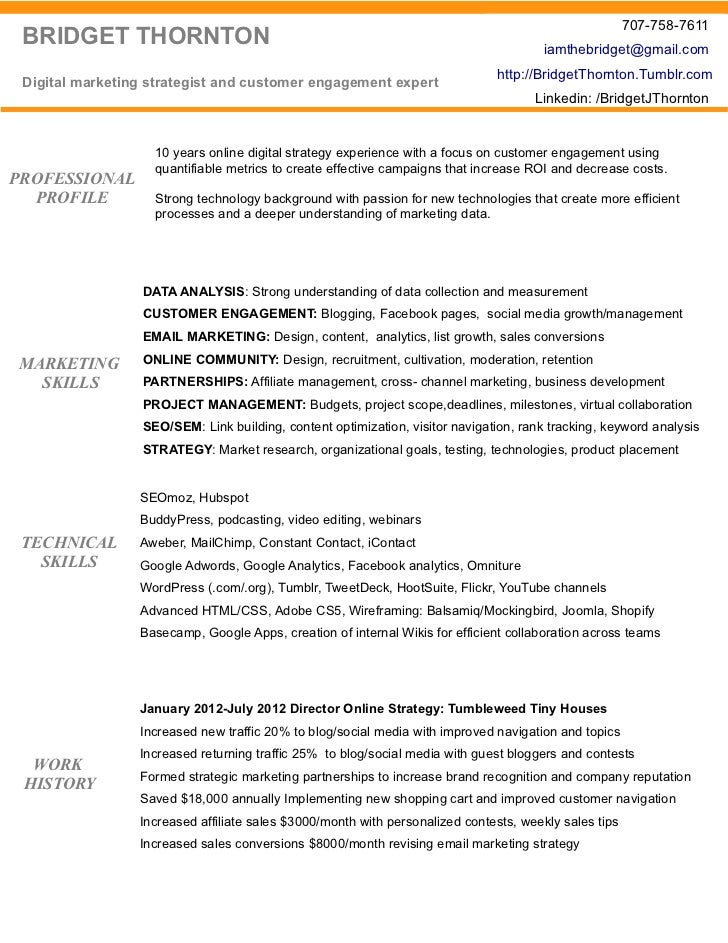 digital media director resume - Digital Marketing Director Resume Sample
