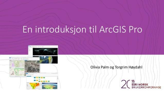 En introduksjon til ArcGIS Pro Olivia Palm og Torgrim Høydahl