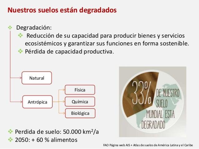 Degradaci n de tierras manejo sostenible del suelo for Como estan formados los suelos