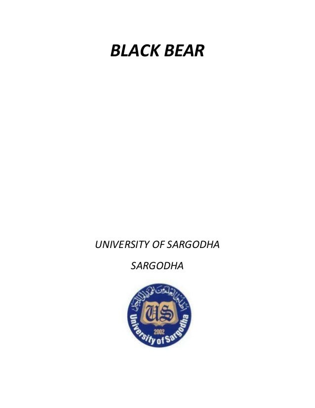 BLACK BEAR UNIVERSITY OF SARGODHA SARGODHA