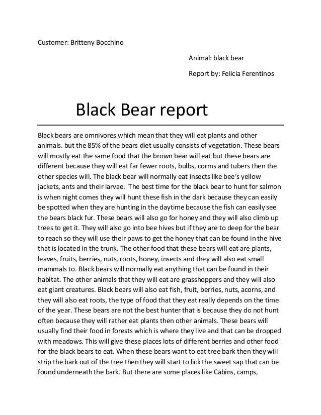 Customer: Britteny Bocchino                                                     Animal: black bear                        ...