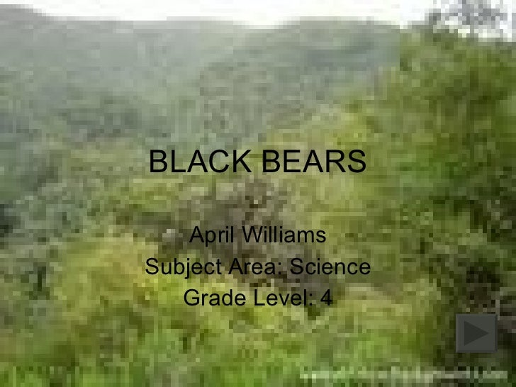 BLACK BEARS April Williams Subject Area: Science Grade Level: 4