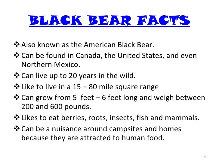 Black bears, and brown bears, and