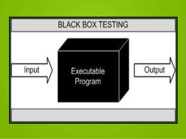 black box testing in software engineering pdf
