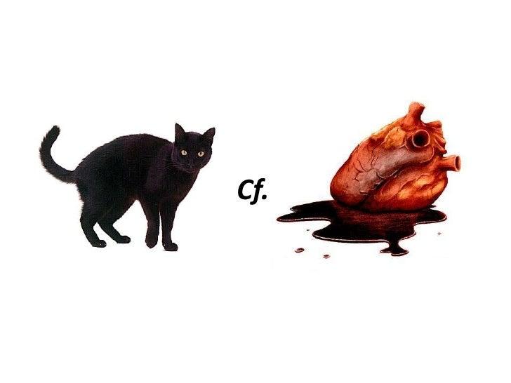 The black cat and the tell tale heart