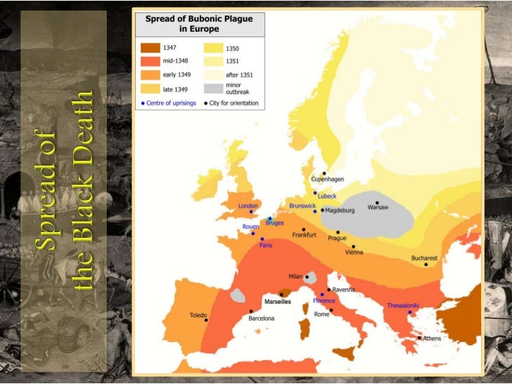the causes and results of the black plague in europe Essay examples search essay a description of the black death in europe and its effect on 1,944 words 4 pages the causes and results of the black plague in.