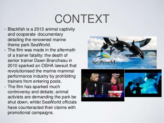 essay on the corporation documentary