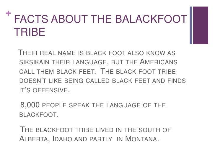 Blackfoot Tribe Location