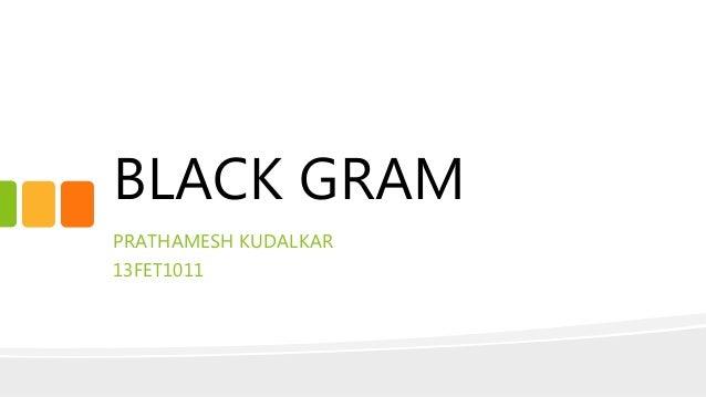 BLACK GRAM PRATHAMESH KUDALKAR 13FET1011