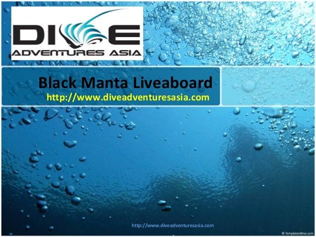 Black Manta Liveaboard http://www.diveadventuresasia.com http://www.diveadventuresasia.com