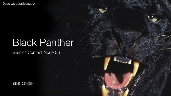 Dauerwerbepräsentation      Black Panther      Gentics Content.Node 5.4