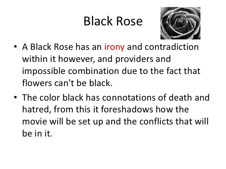 What does a black rose symbolize for Do black roses really exist