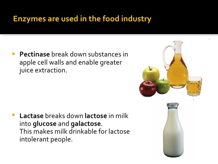 How Can Enzymes Be Used In The Food Industry