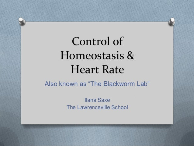"Control of    Homeostasis &     Heart RateAlso known as ""The Blackworm Lab""            Ilana Saxe      The Lawrenceville S..."