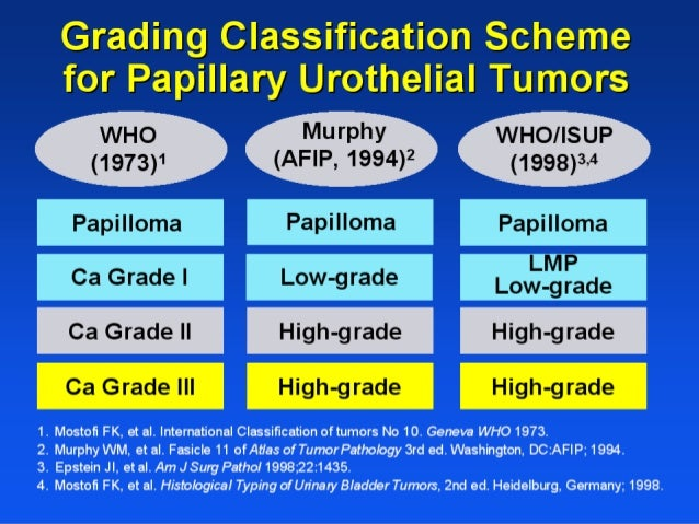 Intravesical chemotherapy • Potentially destroying viable tumor cells that remain following TURBT • Preventing tumor impla...