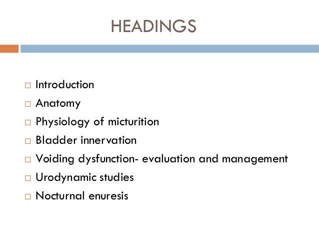 Bladder innervation, physiology of micturition Slide 2